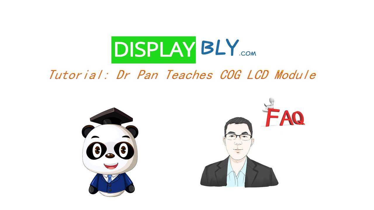 Tutorial Dr Pan Teaches COG LCD Module